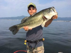 琵琶湖ブラックバス釣果